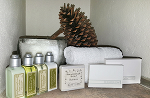 Village Square Guest Amenities